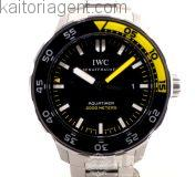 ip-iwc-wt-m-00065_00
