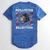 HOLLISTER(ホリスター)買取実績