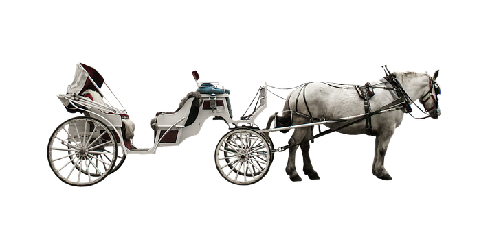 horse-drawn-carriage-2936928__340