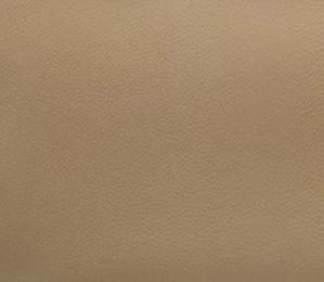 「トゴ」のイメージ画像
