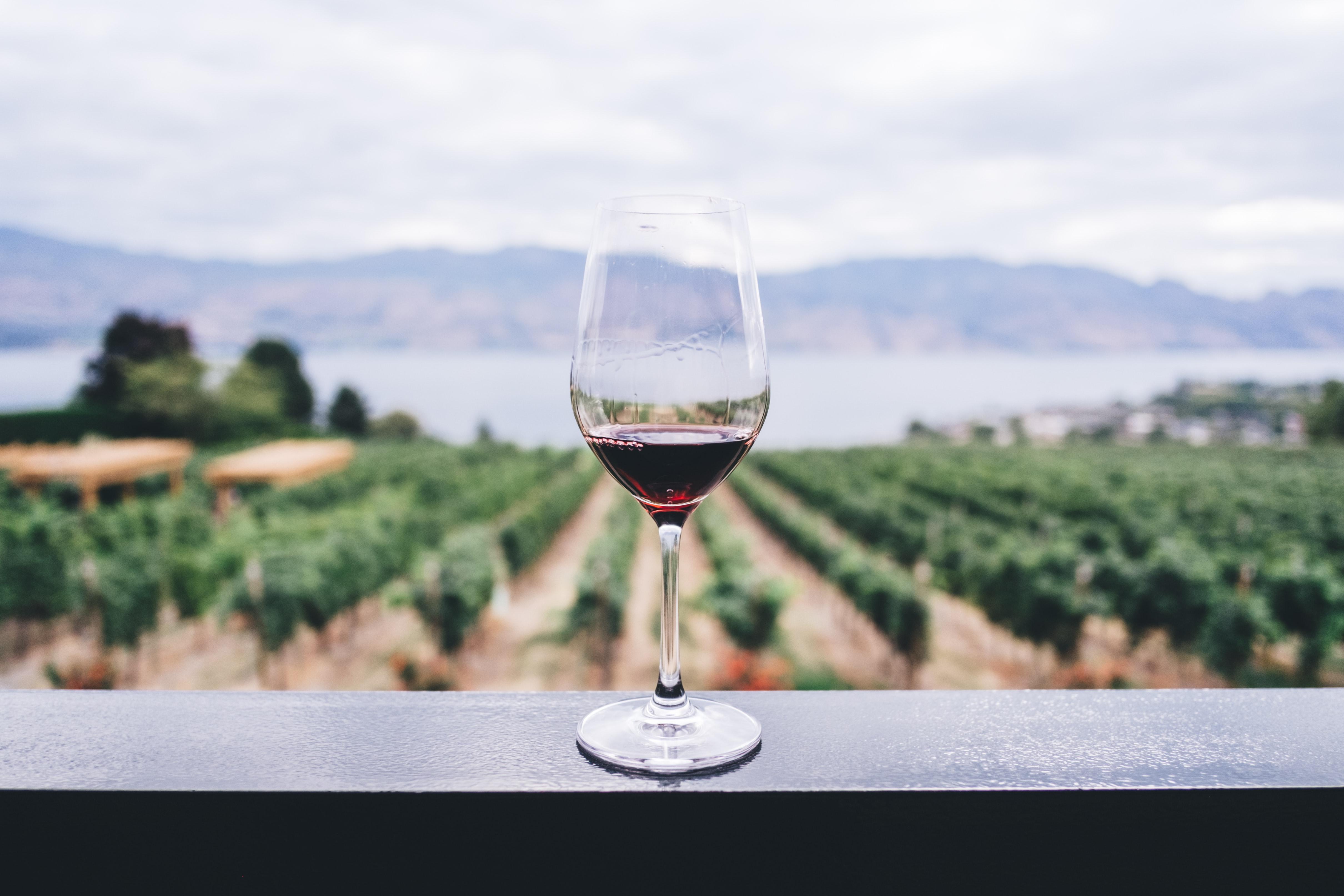 「ワイン&スピリッツ」のイメージ画像