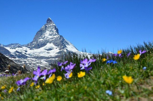 「スイスを代表する国際的機械式時計メーカーへ」のイメージ画像