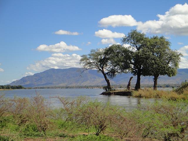 「ザンビア産」のイメージ画像