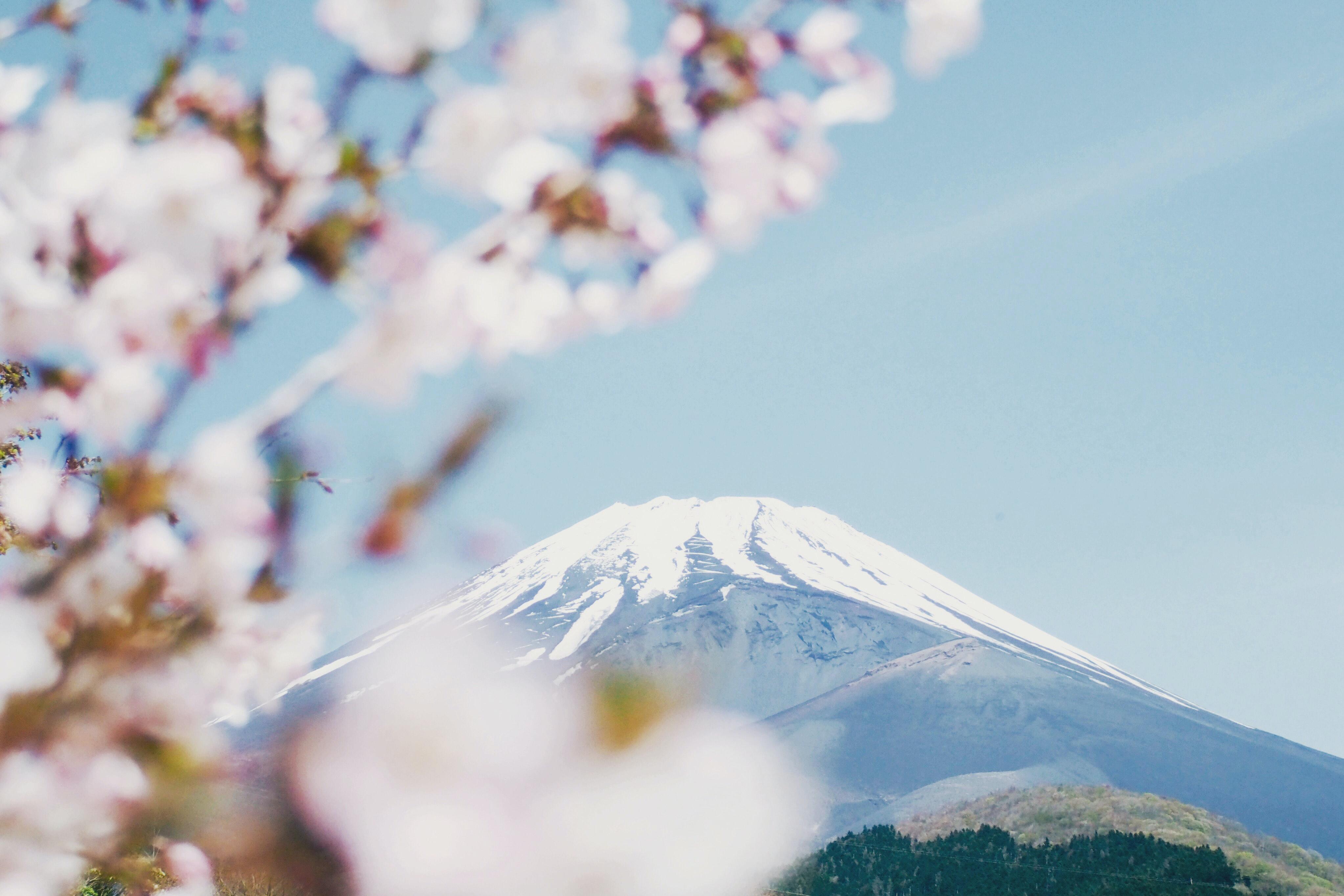 「日本のエルメス製品は品質が低い」のイメージ画像